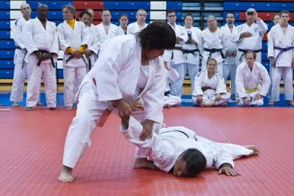 2013 Goshin Jutsu Clinic
