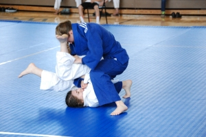 Judo is standing AND groundwork