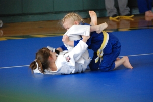 A guard pass is a guard pass...whether you train in Judo or BJJ