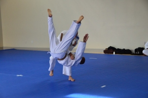 Head over heels for Judo