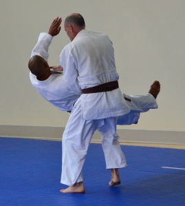 The love of Judo can sweep you off your feet.